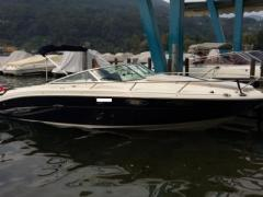 Sea Ray 240 SSE / Occasione