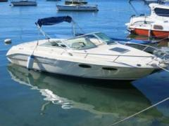 Sea Ray 230 Select Overnighter Sportboot