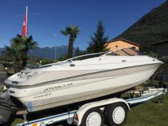 Campion Allante 565 I CD Runabout