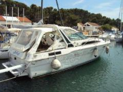 Sea Ray 300 Sportboot