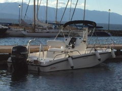 Boston Whaler 200 Dauntless Sportboot