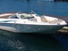 Sea Ray 180 BR Runabout