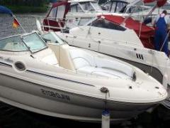 Sea Ray 240 SD inkl. Trailer Wild Boys Sportboot