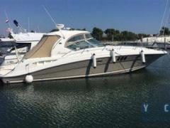 Sea Ray 455 Sundancer Yacht a Motore