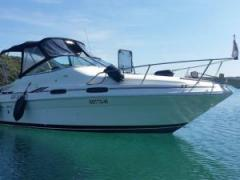 Sea Ray 230 Sportboot