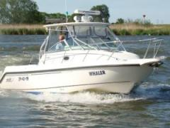 Boston Whaler 275 conquest Sportboot