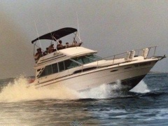 Sea Ray 340 Sedan Bridge Yacht a Motore
