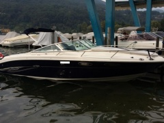 Sea Ray 240 SSE / Occasione Sportboot