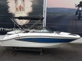 Sea Ray 190 SPXE Sportboot