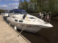 Sealine 290 Family Yacht a Motore